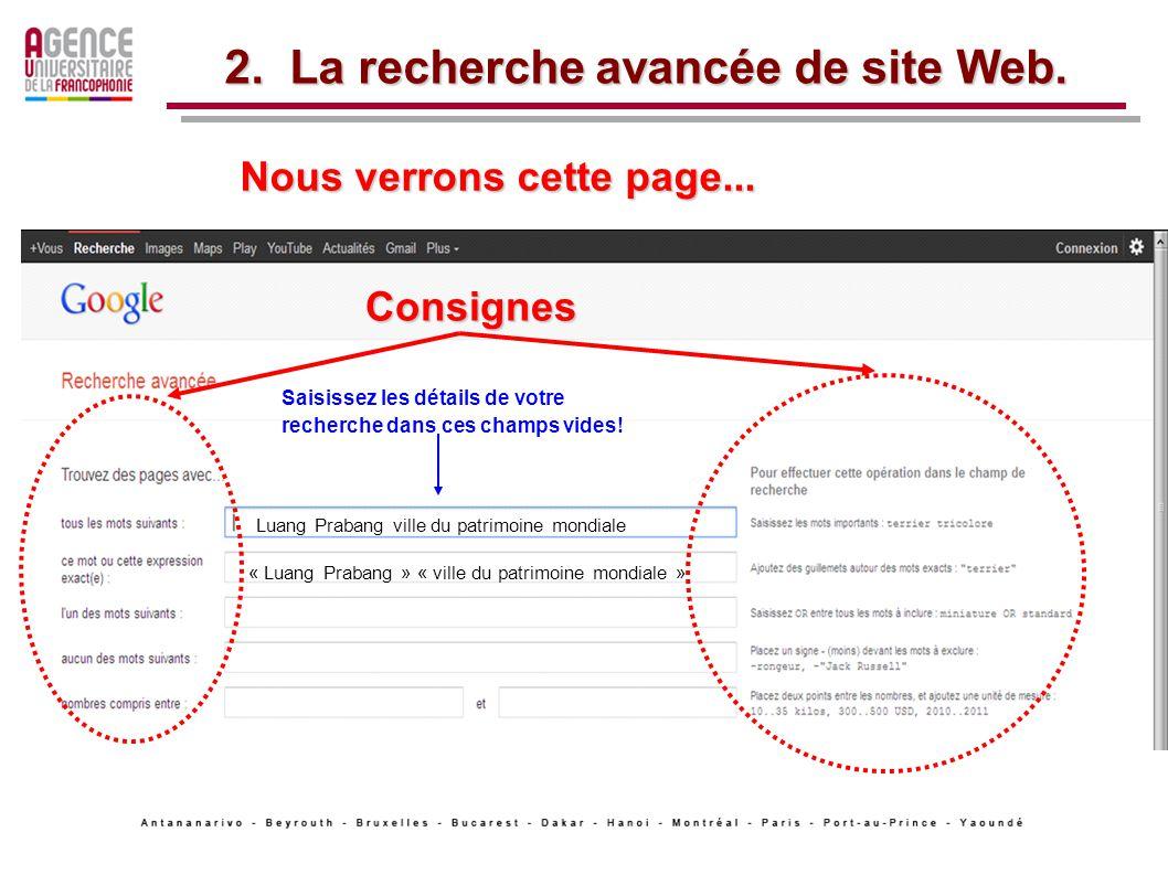 2. La recherche avancée de site Web.