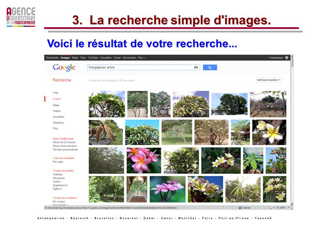 Voici le résultat de votre recherche... 3. La recherche simple d images.