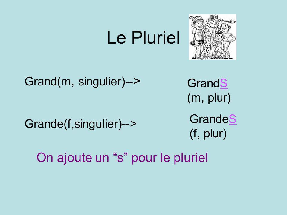 Le Pluriel Grand(m, singulier)-- > GrandS (m, plur) Grande(f,singulier)--> GrandeS (f, plur) On ajoute un s pour le pluriel