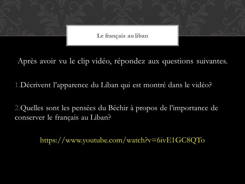 Après avoir vu le clip vidéo, répondez aux questions suivantes.
