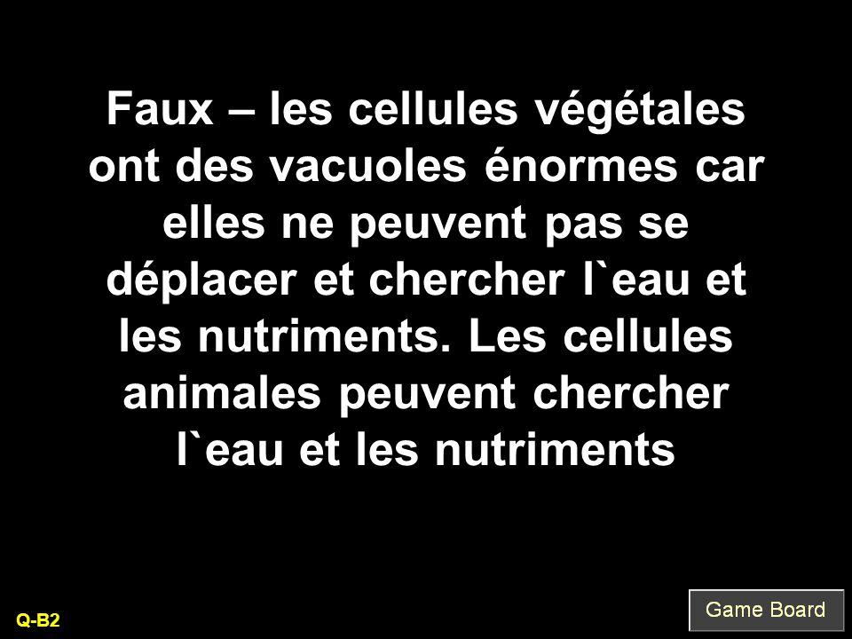 Faux – les cellules végétales ont des vacuoles énormes car elles ne peuvent pas se déplacer et chercher l`eau et les nutriments. Les cellules animales