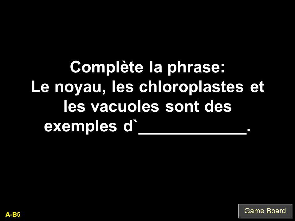 A-B5 Complète la phrase: Le noyau, les chloroplastes et les vacuoles sont des exemples d`____________.