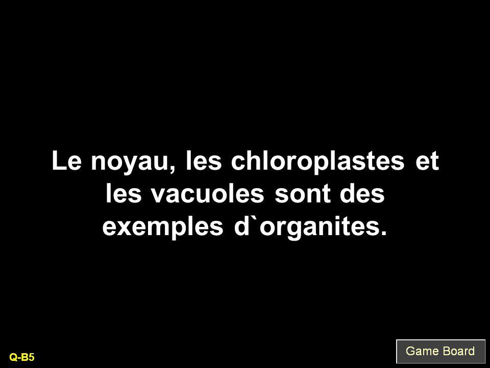 Le noyau, les chloroplastes et les vacuoles sont des exemples d`organites. Q-B5
