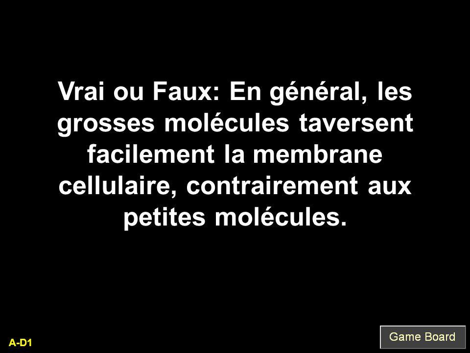 A-D1 Vrai ou Faux: En général, les grosses molécules taversent facilement la membrane cellulaire, contrairement aux petites molécules.