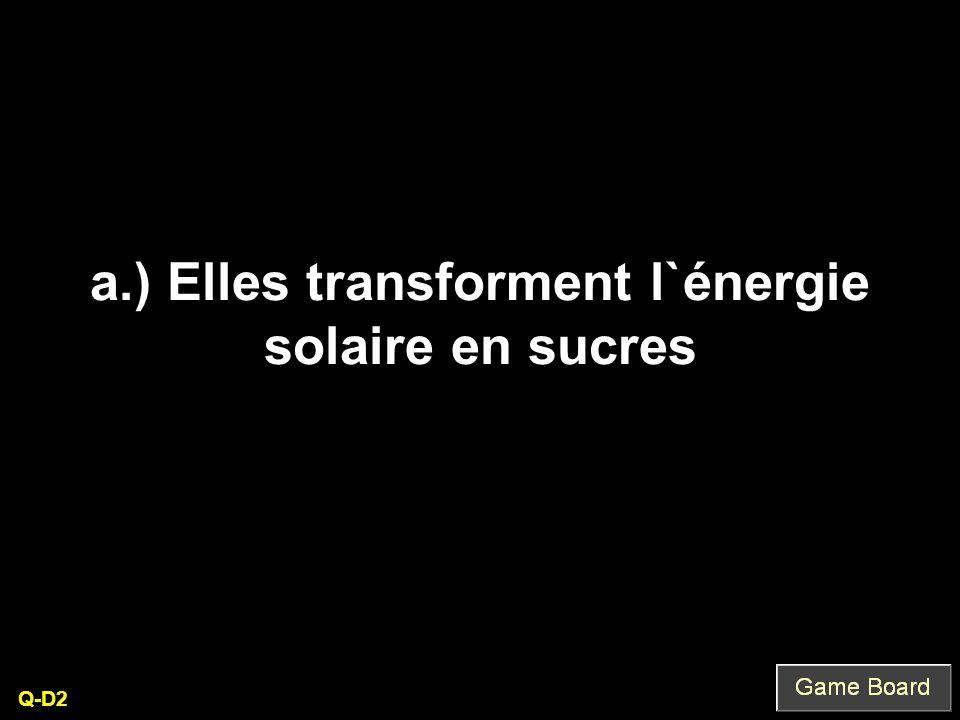 a.) Elles transforment l`énergie solaire en sucres Q-D2