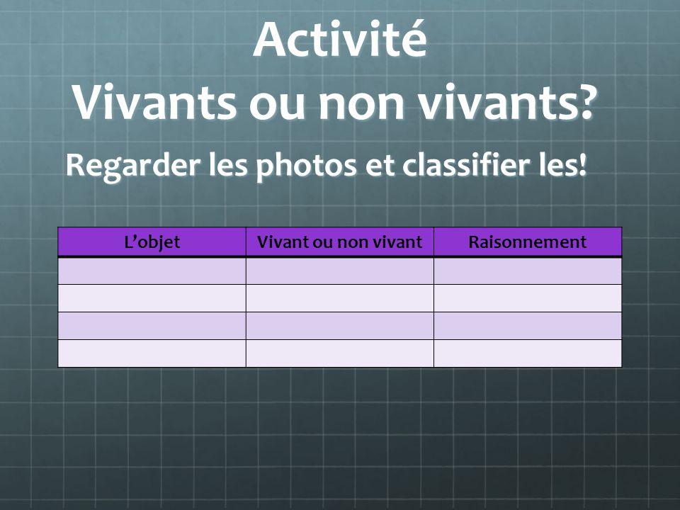 Activité Vivants ou non vivants? Activité Vivants ou non vivants? Regarder les photos et classifier les! LobjetVivant ou non vivantRaisonnement