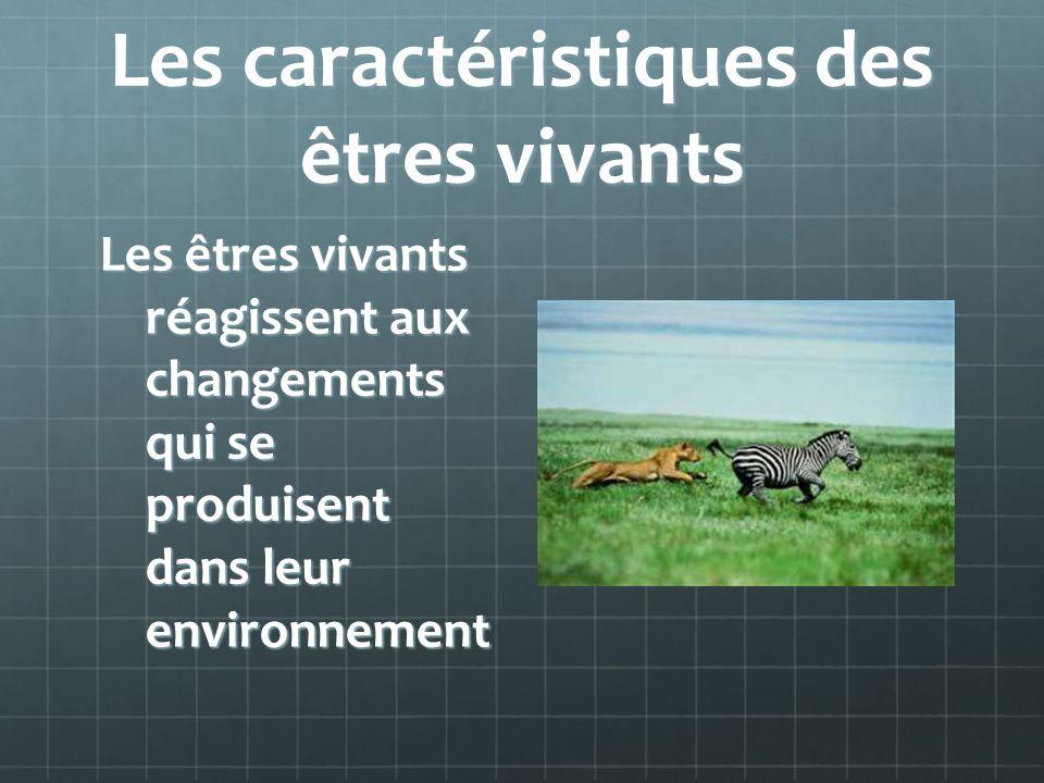Les caractéristiques des êtres vivants Les êtres vivants réagissent aux changements qui se produisent dans leur environnement