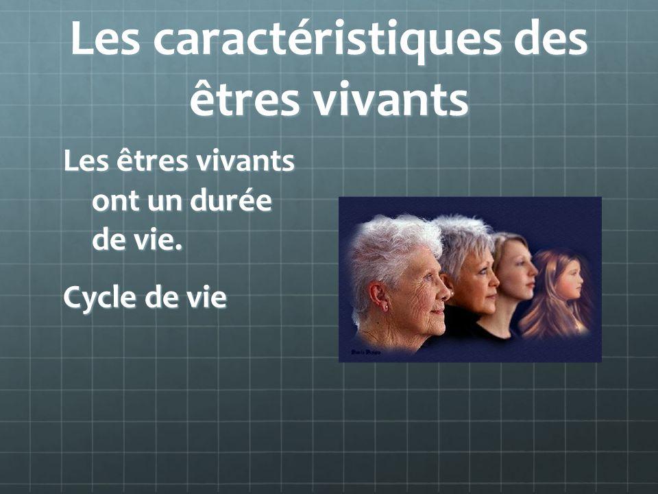 Les caractéristiques des êtres vivants Les êtres vivants ont un durée de vie. Cycle de vie