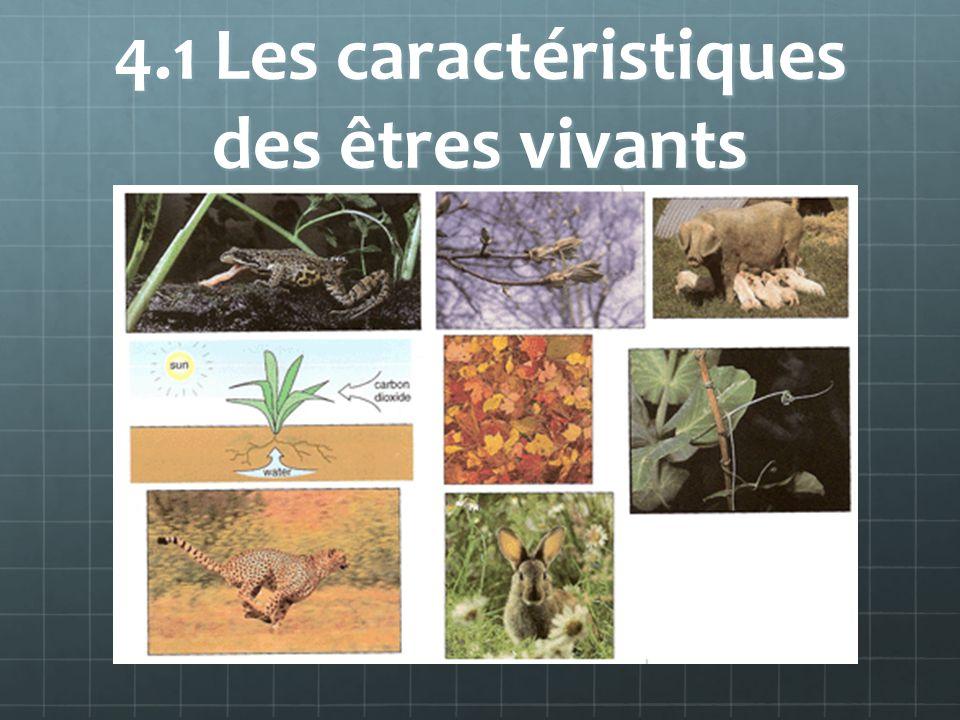 4.1 Les caractéristiques des êtres vivants Les êtres vivants prennent toutes les formes, les couleurs, tailles.