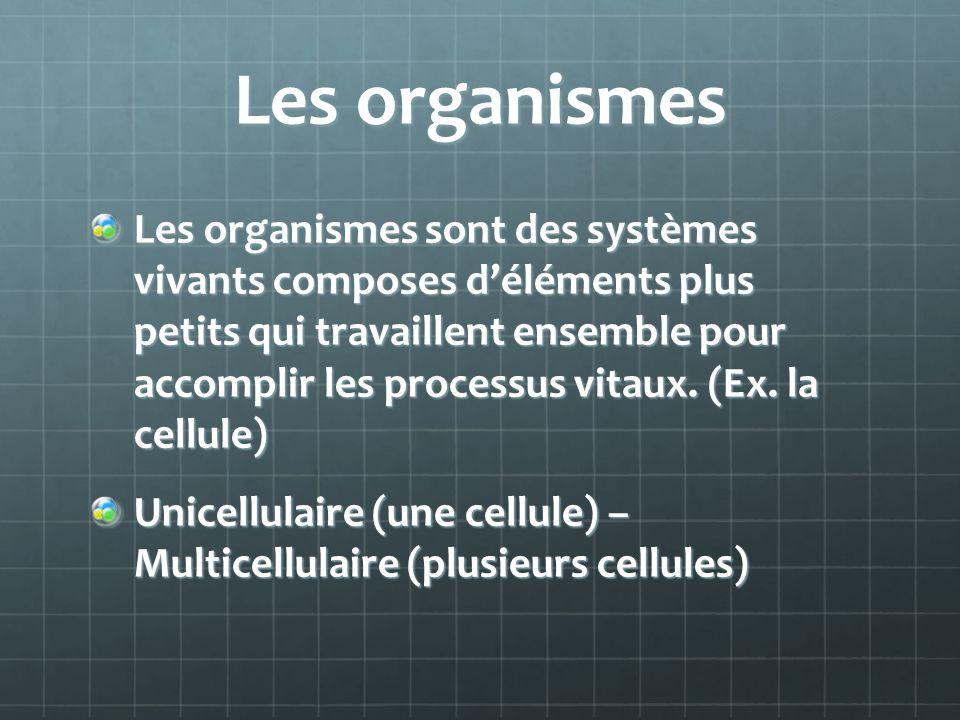 Les organismes Les organismes sont des systèmes vivants composes déléments plus petits qui travaillent ensemble pour accomplir les processus vitaux. (