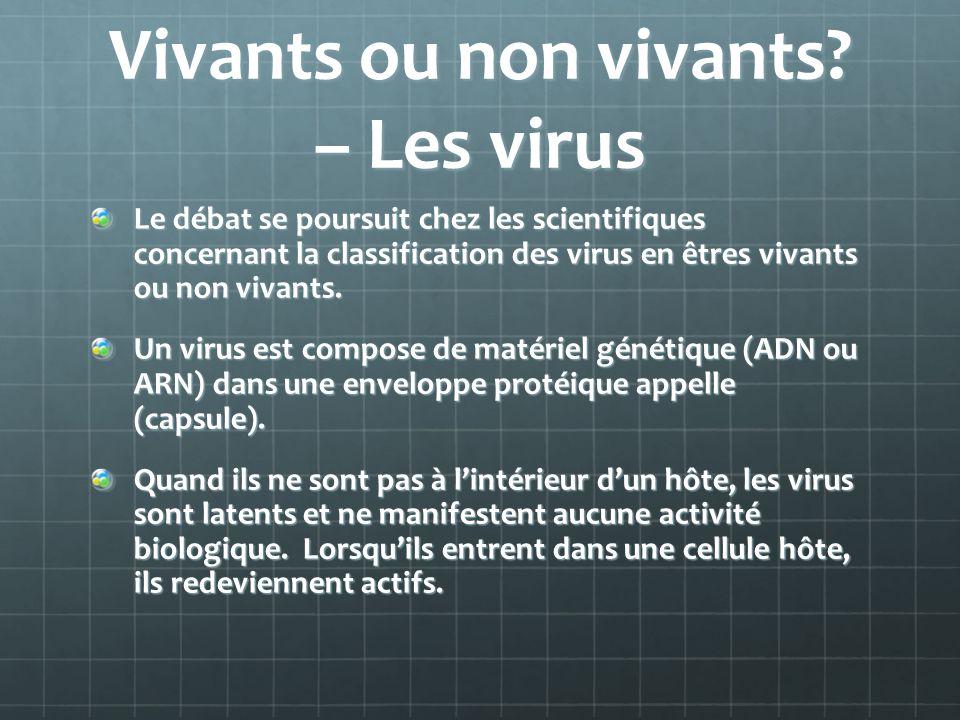 Vivants ou non vivants? – Les virus Le débat se poursuit chez les scientifiques concernant la classification des virus en êtres vivants ou non vivants