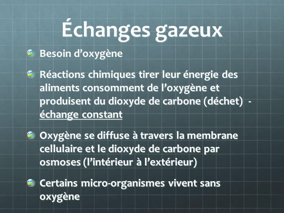 Échanges gazeux Besoin doxygène Réactions chimiques tirer leur énergie des aliments consomment de loxygène et produisent du dioxyde de carbone (déchet) - échange constant Oxygène se diffuse à travers la membrane cellulaire et le dioxyde de carbone par osmoses (lintérieur à lextérieur) Certains micro-organismes vivent sans oxygène