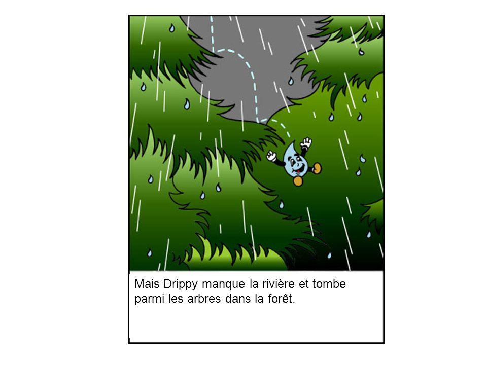 Mais Drippy manque la rivière et tombe parmi les arbres dans la forêt.