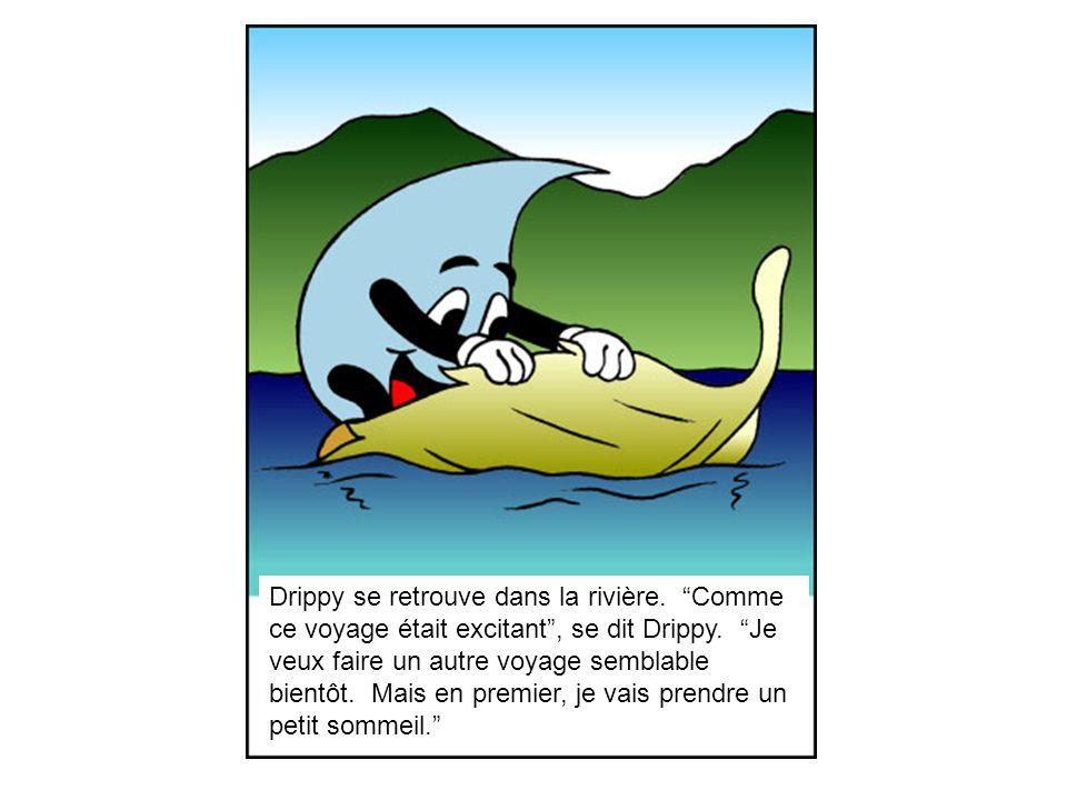 Drippy se retrouve dans la rivière.Comme ce voyage était excitant, se dit Drippy.