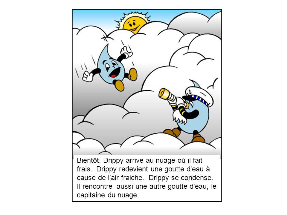 Bientôt, Drippy arrive au nuage où il fait frais.