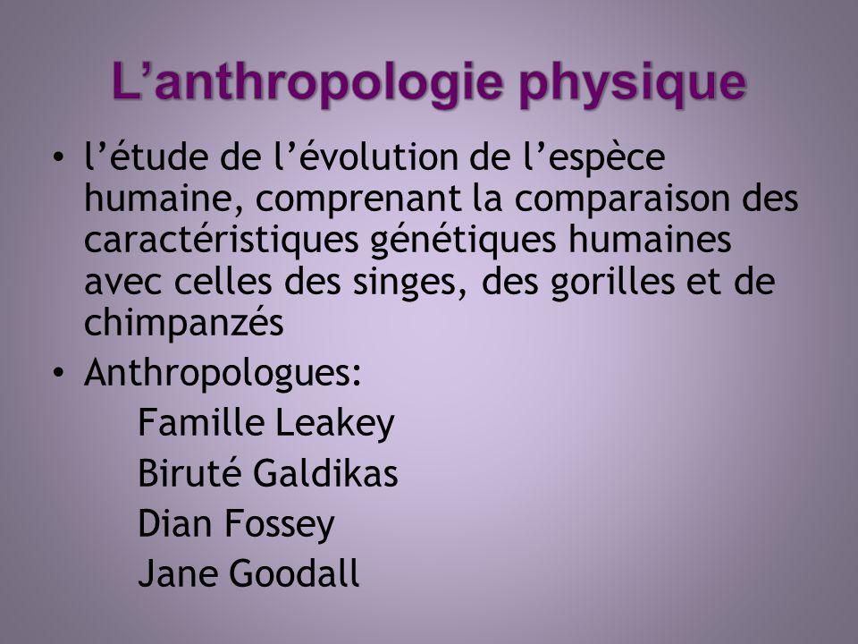 létude de lévolution de lespèce humaine, comprenant la comparaison des caractéristiques génétiques humaines avec celles des singes, des gorilles et de
