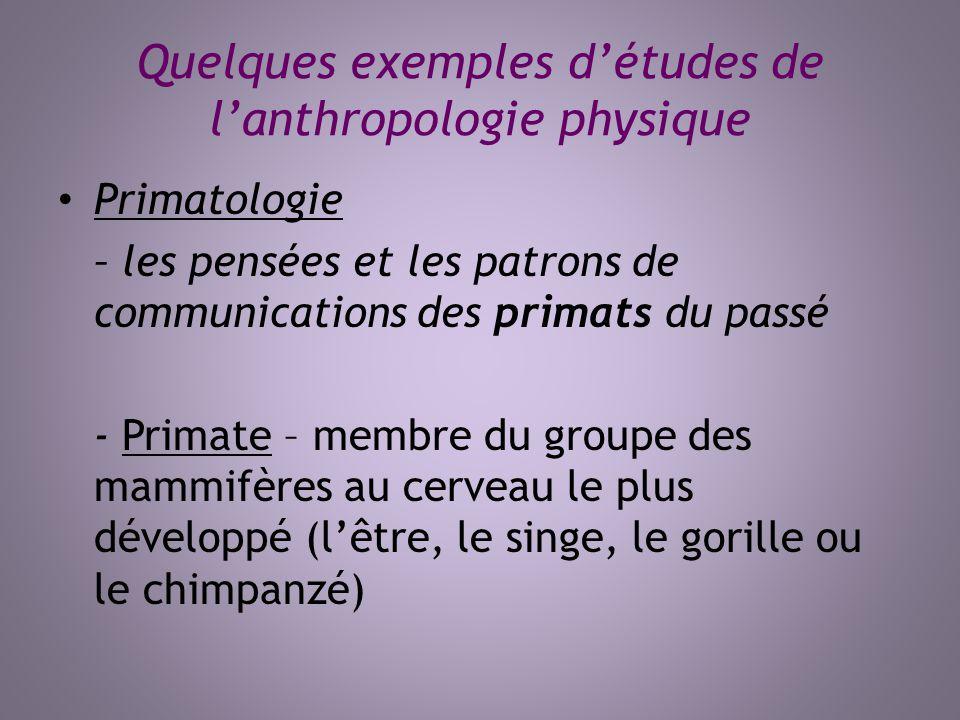 Quelques exemples détudes de lanthropologie physique Primatologie – les pensées et les patrons de communications des primats du passé - Primate – memb