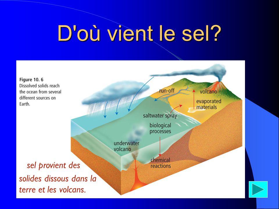 D'où vient le sel? * sel provient des solides dissous dans la terre et les volcans.