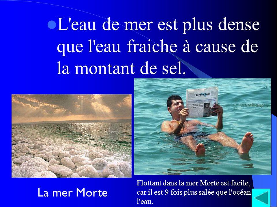 L'eau de mer est plus dense que l'eau fraiche à cause de la montant de sel. La mer Morte Flottant dans la mer Morte est facile, car il est 9 fois plus