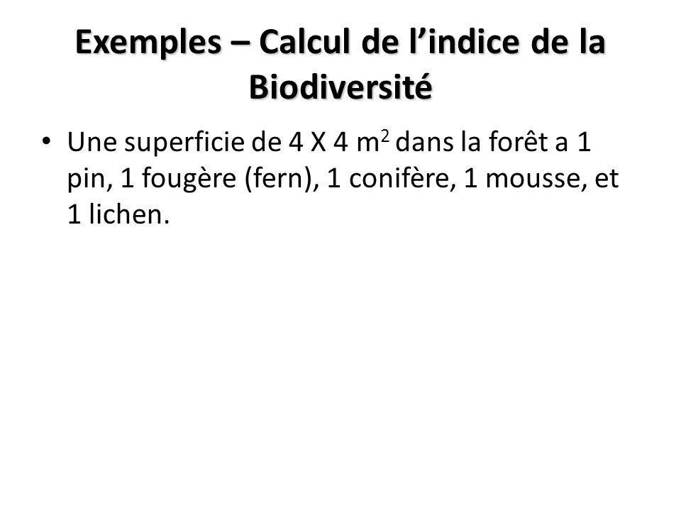 Exemples – Calcul de lindice de la Biodiversité Une superficie de 4 X 4 m 2 dans la forêt a 1 pin, 1 fougère (fern), 1 conifère, 1 mousse, et 1 lichen.