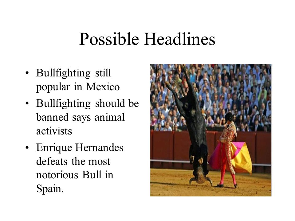 Possible Headlines Bullfighting still popular in Mexico Bullfighting should be banned says animal activists Enrique Hernandes defeats the most notorious Bull in Spain.
