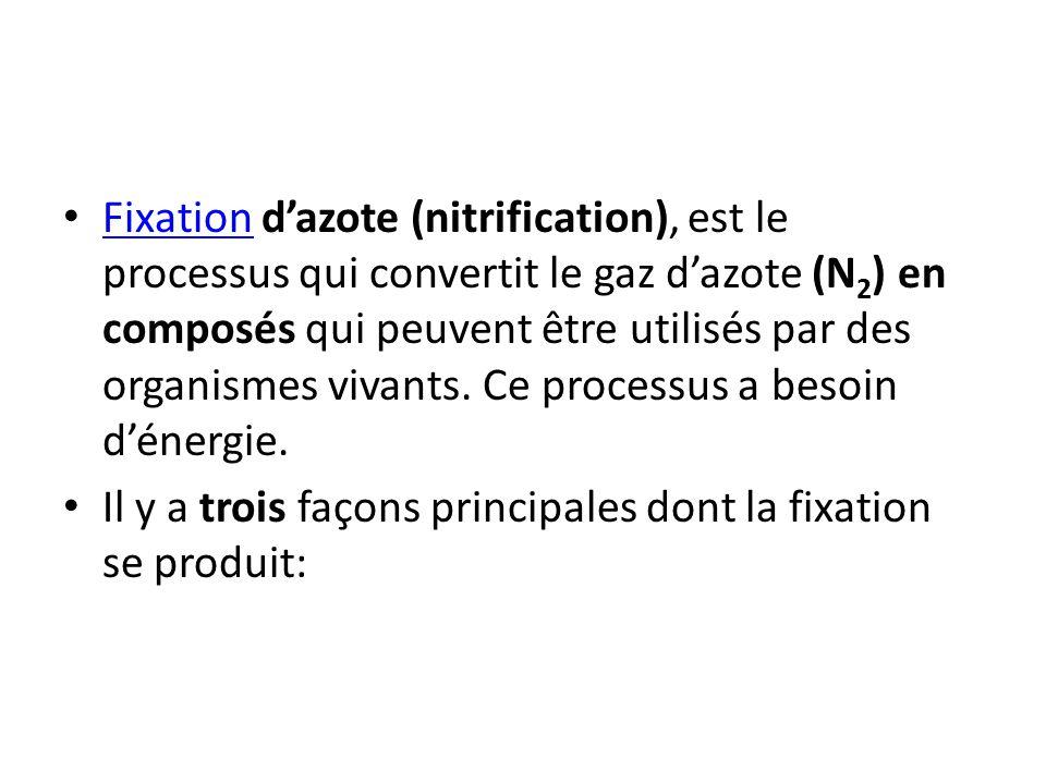 Fixation dazote (nitrification), est le processus qui convertit le gaz dazote (N 2 ) en composés qui peuvent être utilisés par des organismes vivants.
