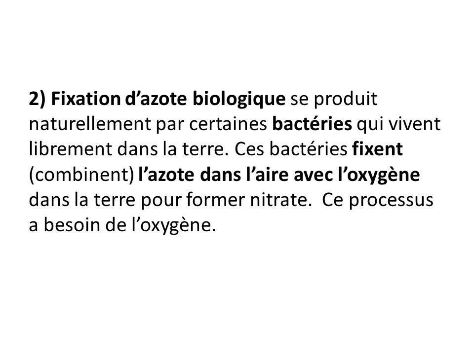 2) Fixation dazote biologique se produit naturellement par certaines bactéries qui vivent librement dans la terre. Ces bactéries fixent (combinent) la