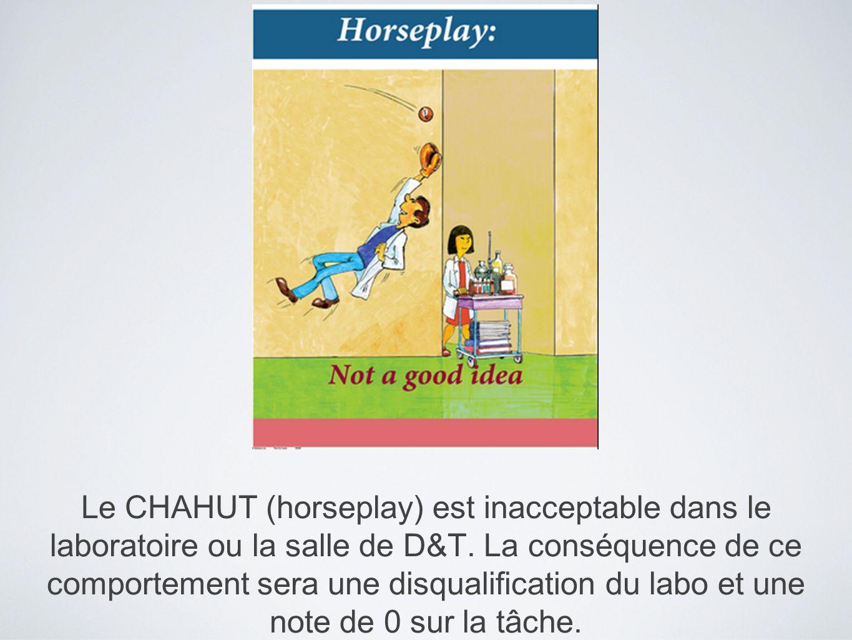 Le CHAHUT (horseplay) est inacceptable dans le laboratoire ou la salle de D&T. La conséquence de ce comportement sera une disqualification du labo et