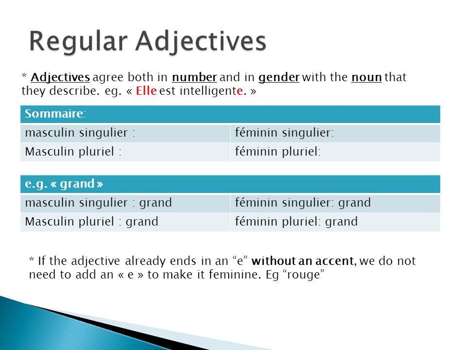 Sommaire: masculin singulier :féminin singulier: Masculin pluriel :féminin pluriel: e.g.