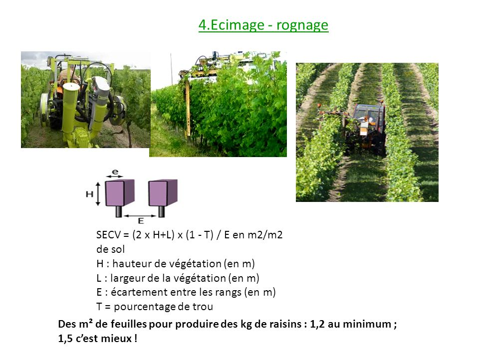 Des m² de feuilles pour produire des kg de raisins : 1,2 au minimum ; 1,5 cest mieux ! 4.Ecimage - rognage SECV = (2 x H+L) x (1 - T) / E en m2/m2 de