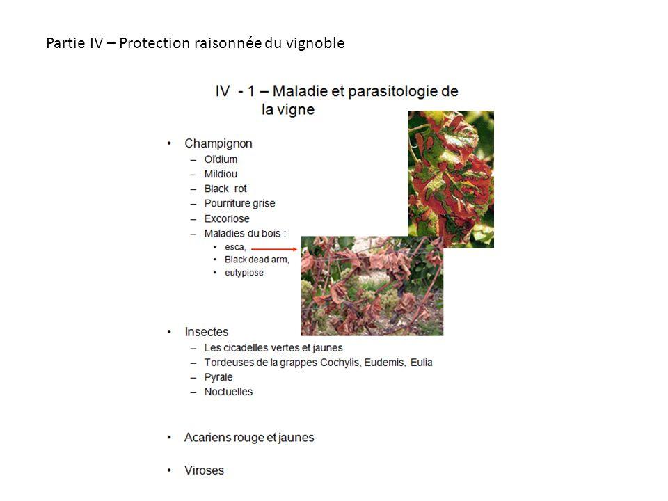 Partie IV – Protection raisonnée du vignoble