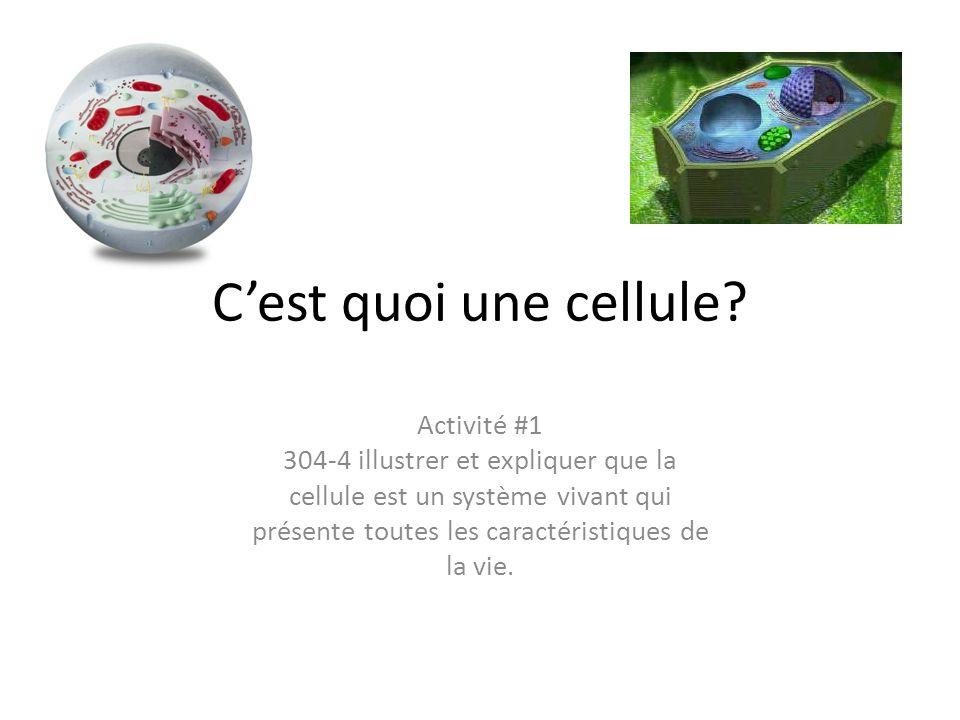 Cest quoi une cellule? Activité #1 304-4 illustrer et expliquer que la cellule est un système vivant qui présente toutes les caractéristiques de la vi