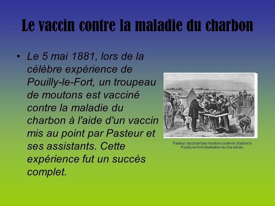 Le vaccin contre la maladie du charbon Le 5 mai 1881, lors de la célèbre expérience de Pouilly-le-Fort, un troupeau de moutons est vacciné contre la m