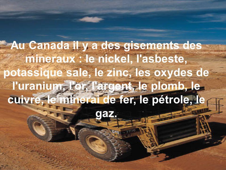 Au Canada il y a des gisements des mineraux : le nickel, l'asbeste, potassique sale, le zinc, les oxydes de l'uranium, l'or, l'argent, le plomb, le cu