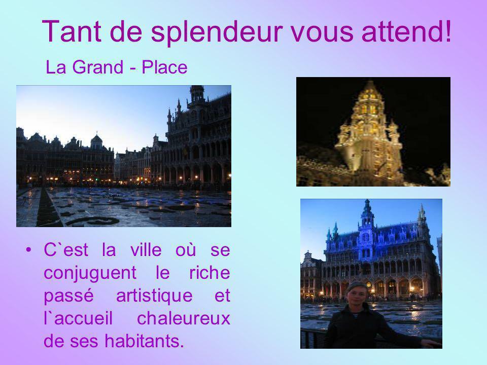Tant de splendeur vous attend! La Grand - Place С`est la ville où se conjuguent le riche passé artistique et l`accueil chaleureux de ses habitants.