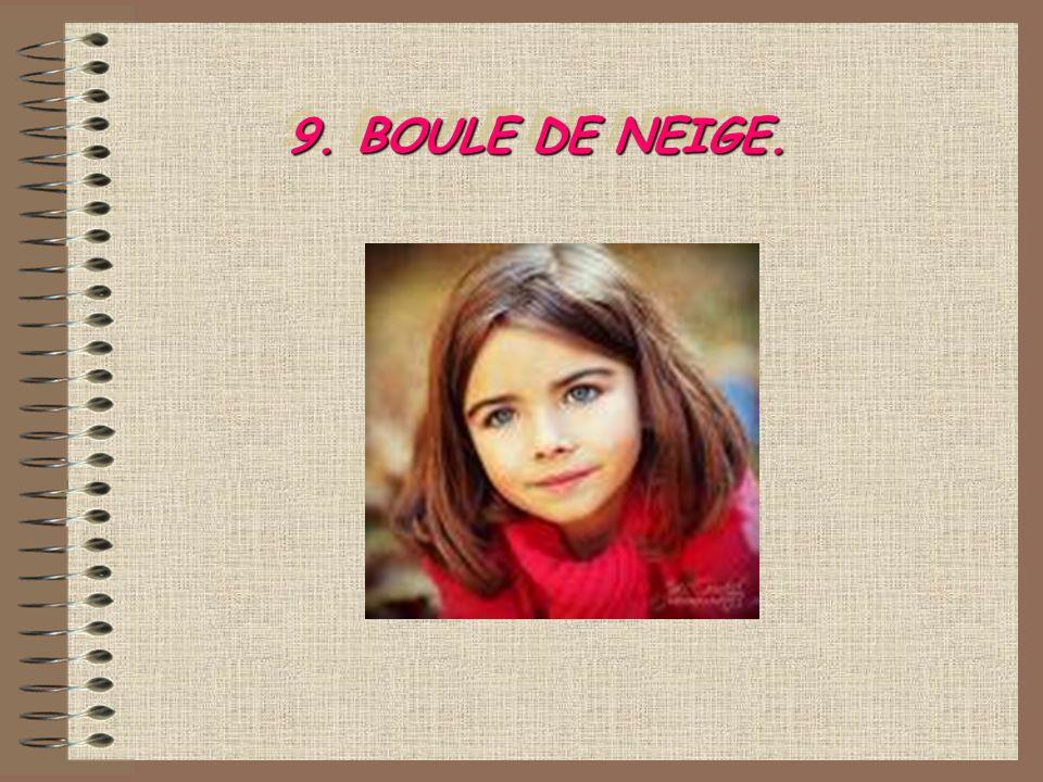 9. BOULE DE NEIGE.