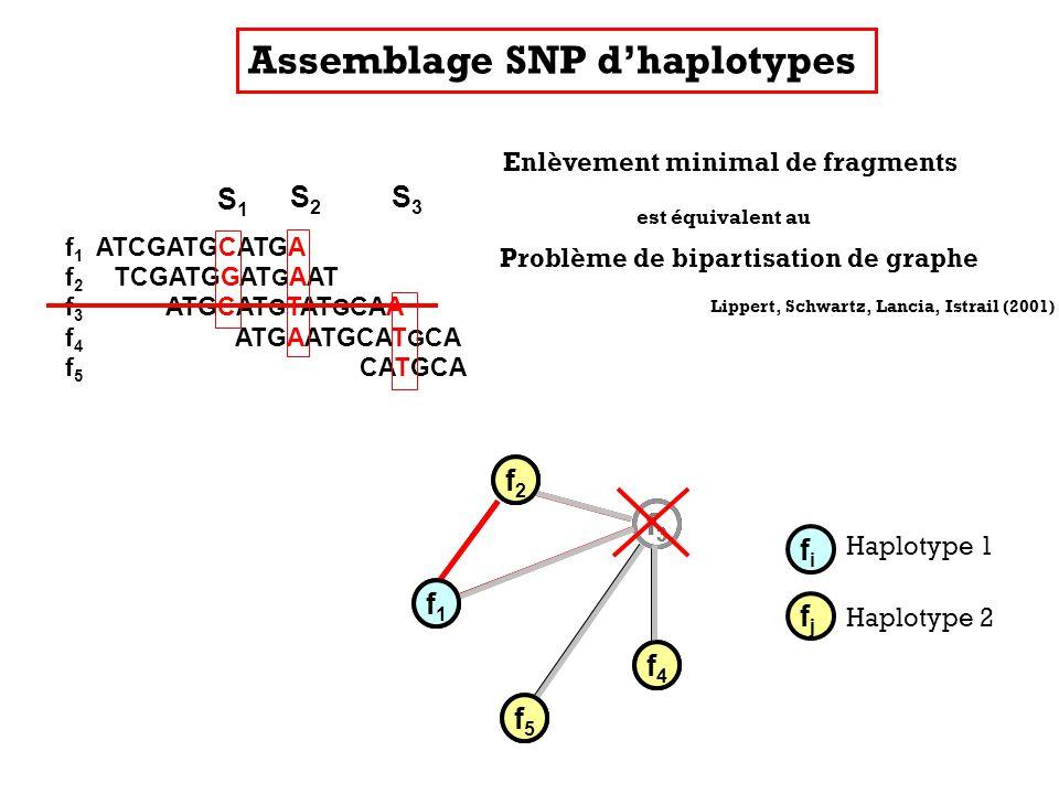 Enlèvement minimal de fragments f1f1 f2f2 f5f5 f4f4 f3f3 Problème de bipartisation de graphe Lippert, Schwartz, Lancia, Istrail (2001) Assemblage SNP