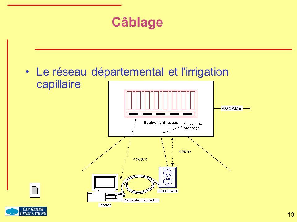 10 Câblage Le réseau départemental et l'irrigation capillaire