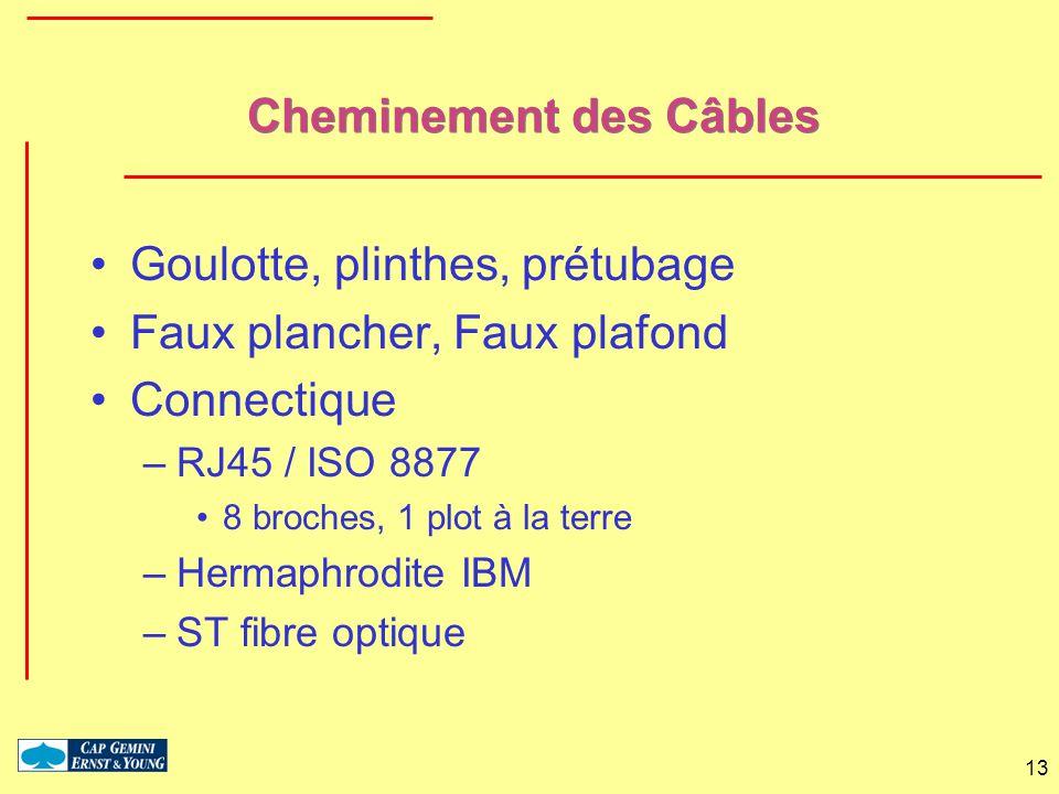 13 Cheminement des Câbles Goulotte, plinthes, prétubage Faux plancher, Faux plafond Connectique –RJ45 / ISO 8877 8 broches, 1 plot à la terre –Hermaph
