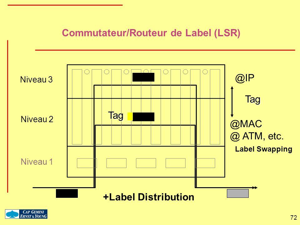 72 Commutateur/Routeur de Label (LSR) Niveau 3 Niveau 2 Niveau 1 Tag Label Swapping @IP @MAC @ ATM, etc. +Label Distribution Tag