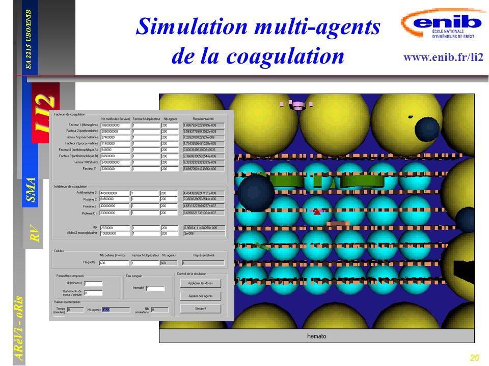 20 LI2 SMA EA 2215 UBO/ENIB ARéVi - oRis www.enib.fr/li2 RV Simulation multi-agents de la coagulation