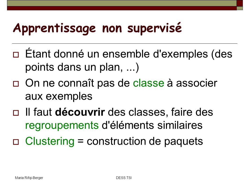 Maria Rifqi-BergerDESS TSI Apprentissage non supervisé Étant donné un ensemble d'exemples (des points dans un plan,...) On ne connaît pas de classe à