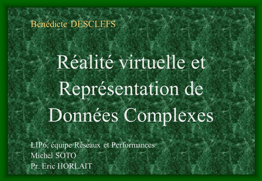 Bénédicte DESCLEFS Réalité virtuelle et Représentation de Données Complexes LIP6, équipe Réseaux et Performances Michel SOTO Pr. Eric HORLAIT