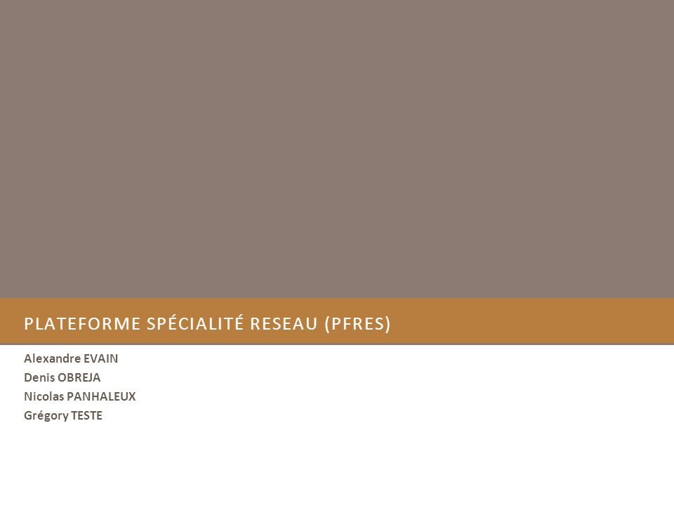 PLATEFORME SPÉCIALITÉ RESEAU (PFRES) Alexandre EVAIN Denis OBREJA Nicolas PANHALEUX Grégory TESTE