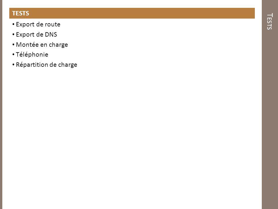 T ESTS Export de route Export de DNS Montée en charge Téléphonie Répartition de charge
