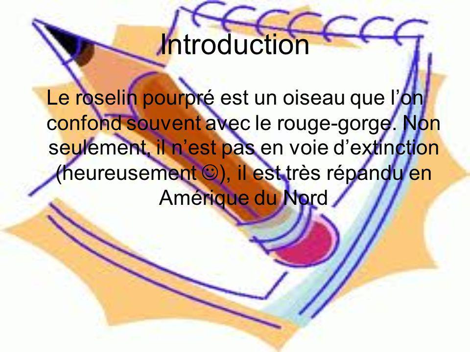 Introduction Aspect physique Habitat Alimentation Reproduction Nids et petits Conclusion Résumé Bibliographie