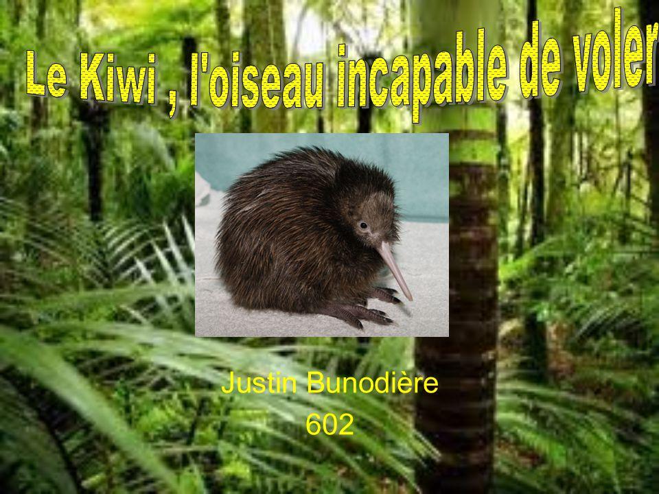 Justin Bunodière 602