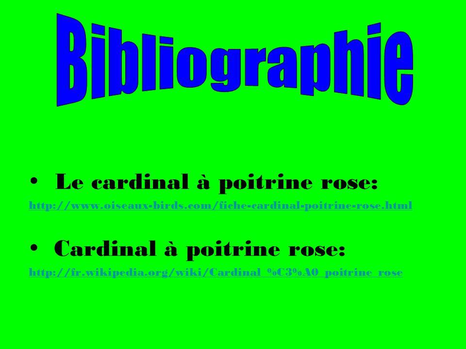 Le cardinal à poitrine rose: http://www.oiseaux-birds.com/fiche-cardinal-poitrine-rose.html Cardinal à poitrine rose: http://fr.wikipedia.org/wiki/Car