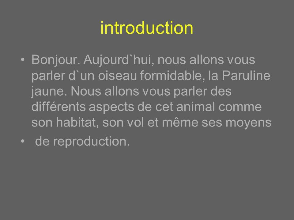 introduction Bonjour.