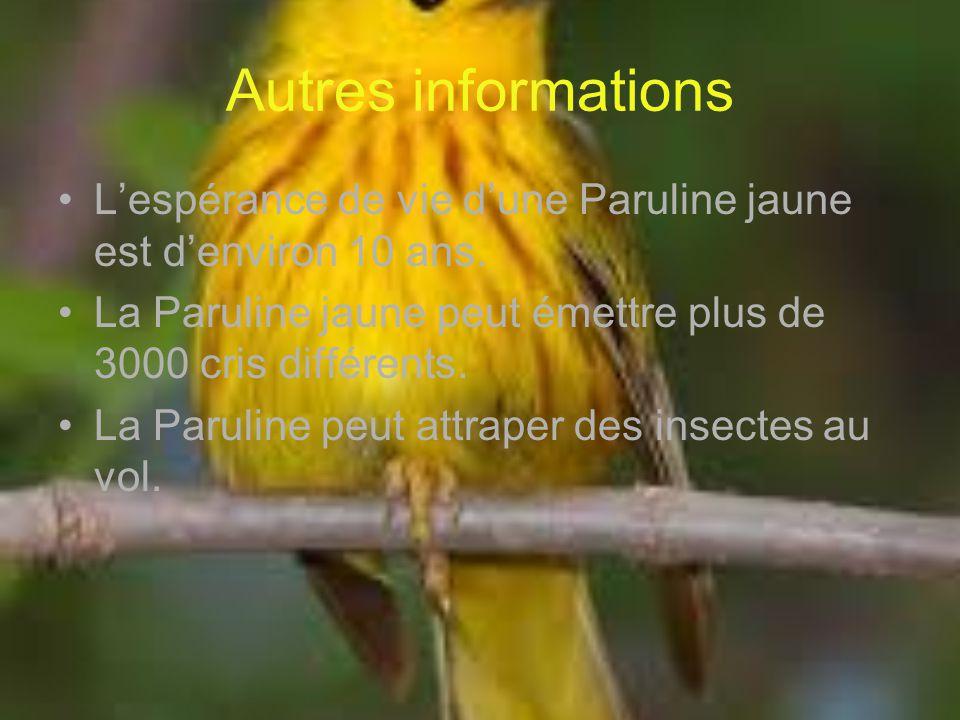 Autres informations Lespérance de vie dune Paruline jaune est denviron 10 ans. La Paruline jaune peut émettre plus de 3000 cris différents. La Parulin